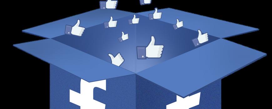 Comment déterminer les fans idéals pour sa page Facebook ?